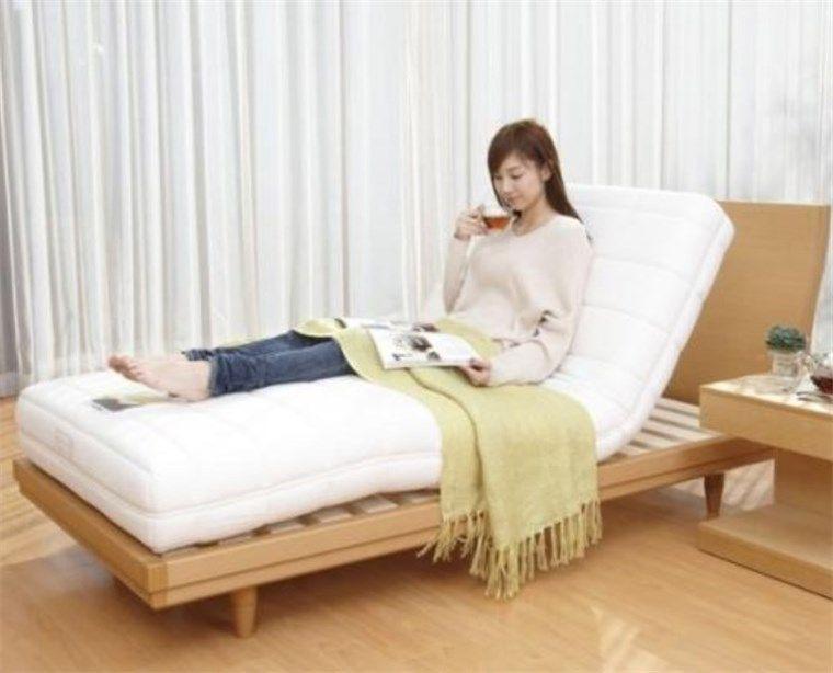 フランスベッド 電動リクライニング